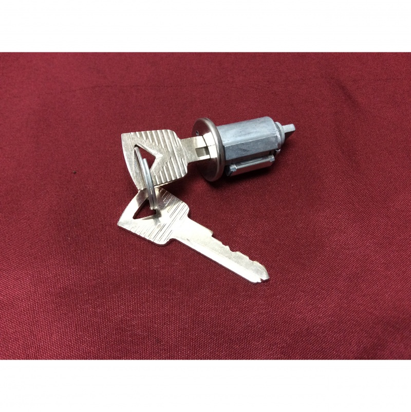 ignition switch tumbler with 2 keys, new